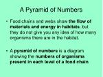 a pyramid of numbers