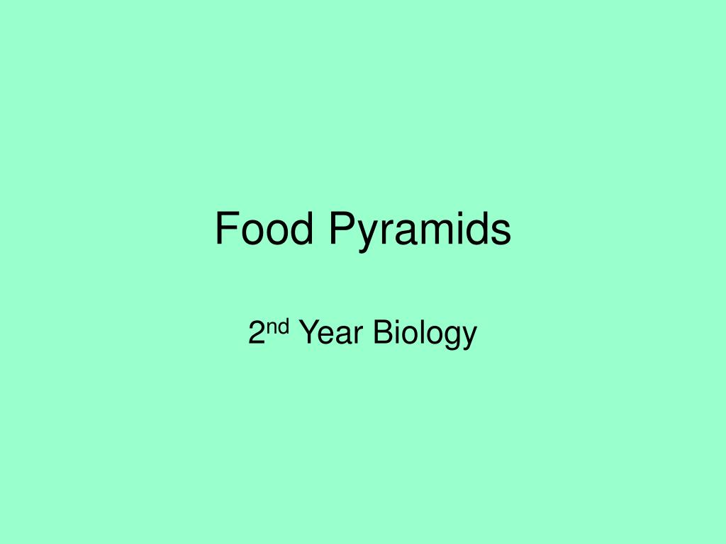 food pyramids l.