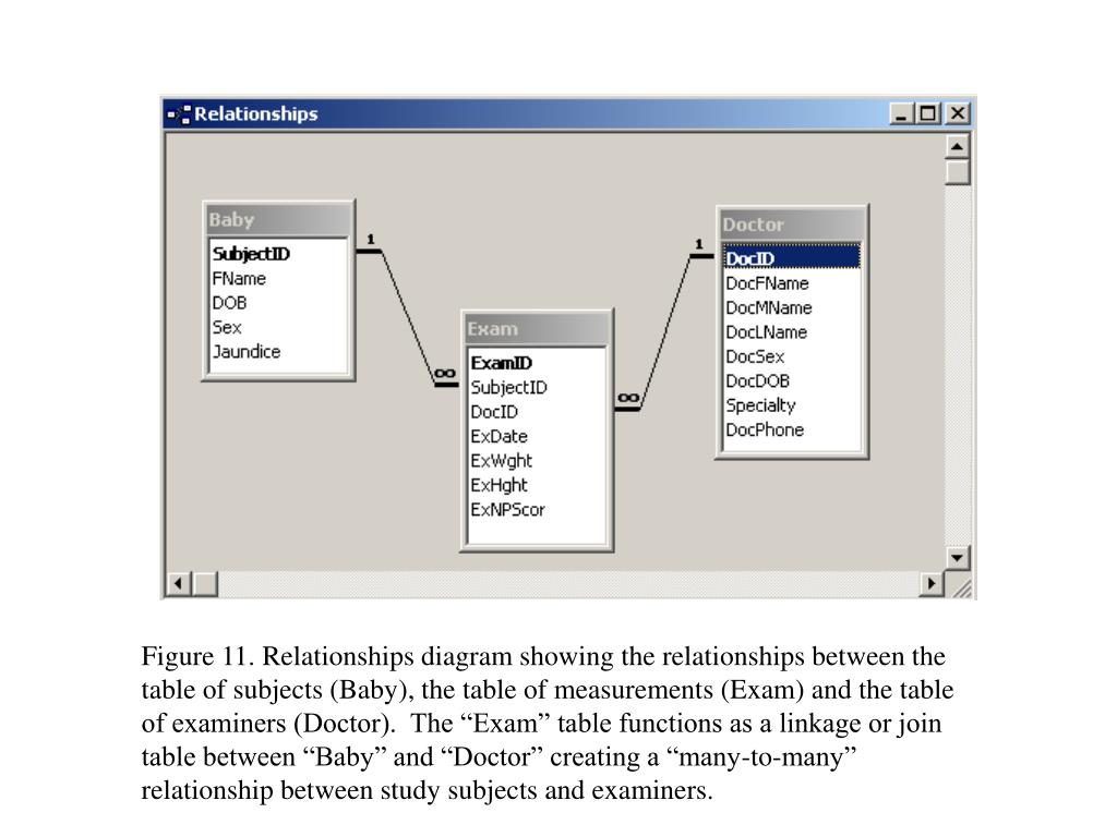 """Figure 11. Relationships diagram showing the relationships between the table of subjects (Baby), the table of measurements (Exam) and the table of examiners (Doctor).  The """"Exam"""" table functions as a linkage or join table between """"Baby"""" and """"Doctor"""" creating a """"many-to-many"""" relationship between study subjects and examiners."""
