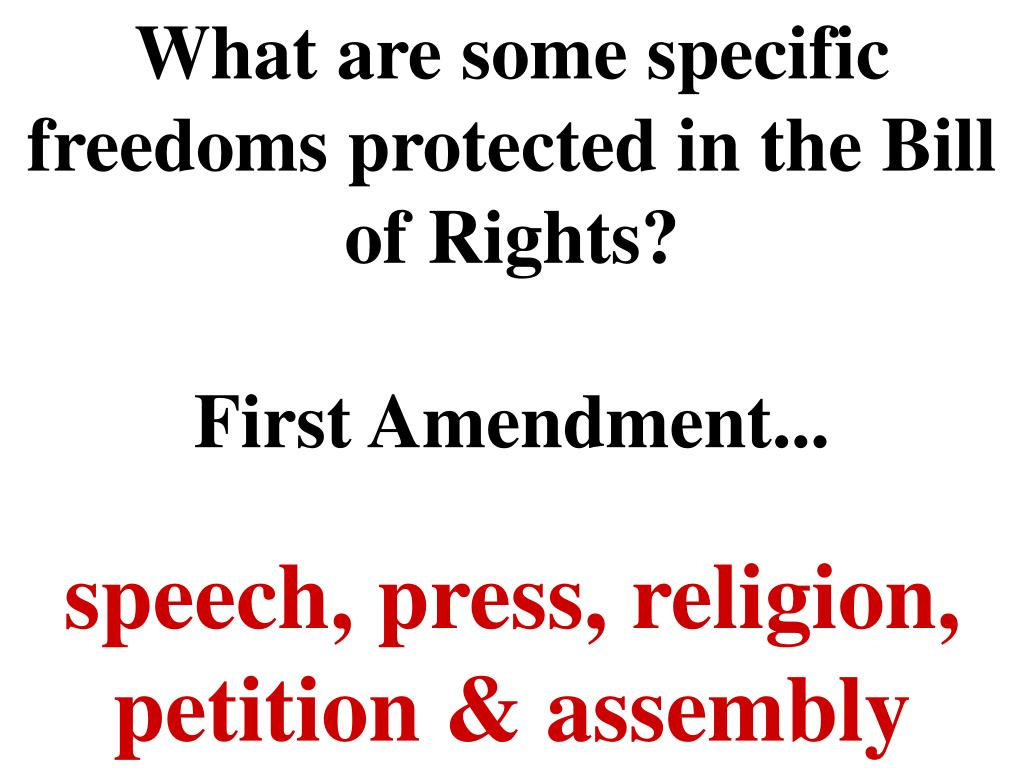 What are some specific freedoms protected in the Bill of Rights?