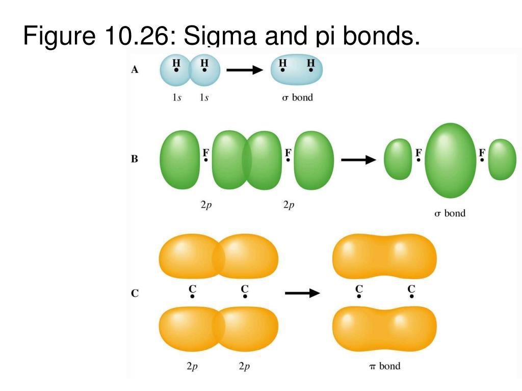Figure 10.26: Sigma and pi bonds.