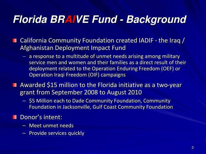 Florida br ai ve fund background