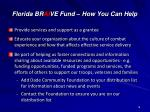 florida br ai ve fund how you can help
