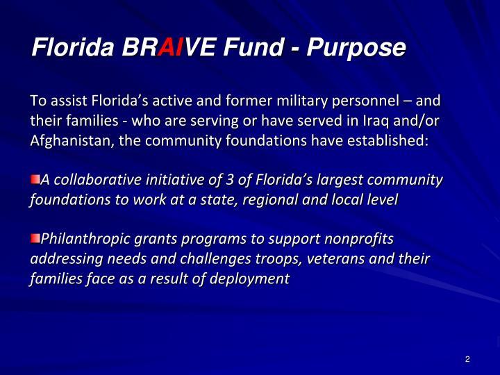 Florida br ai ve fund purpose