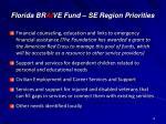 florida br ai ve fund se region priorities1