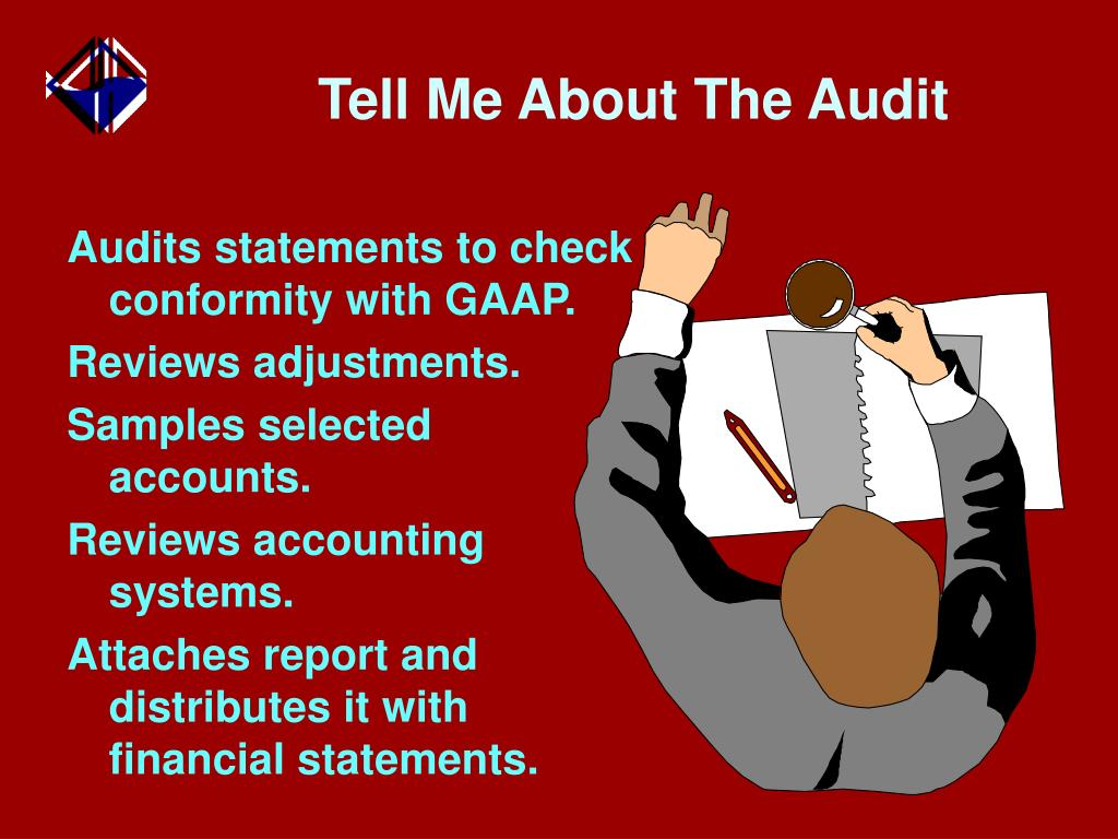 Tell Me About The Audit