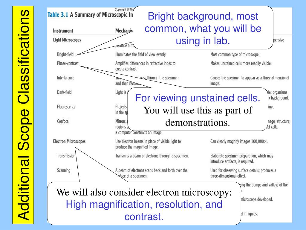 Bright background, most common, what you will be using in lab.