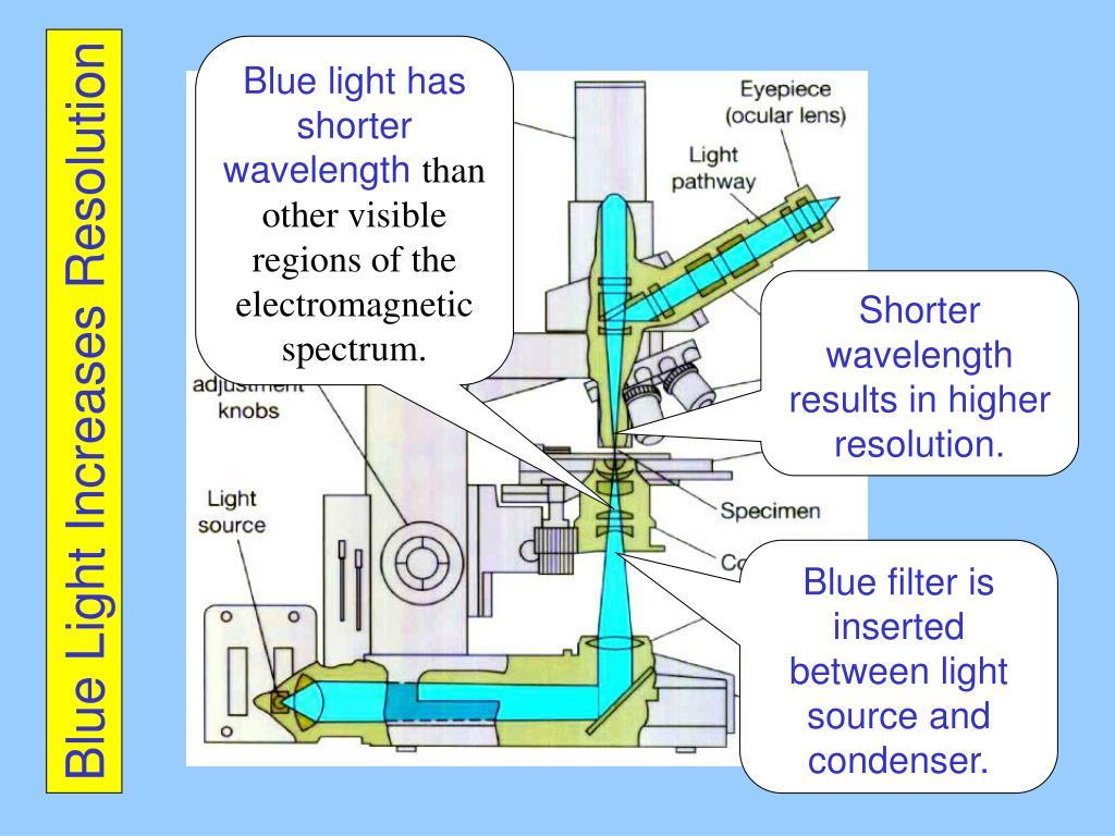 Blue light has shorter wavelength