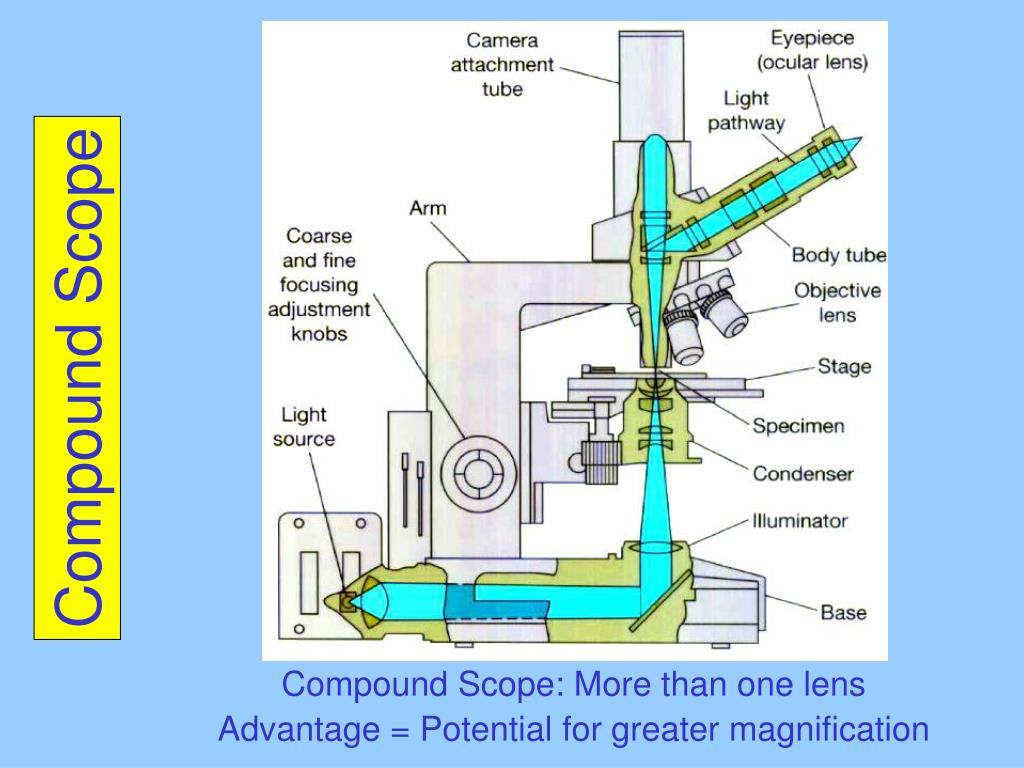 Compound Scope