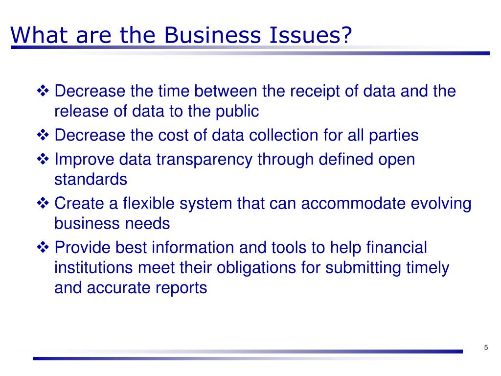 What are the Business Issues?
