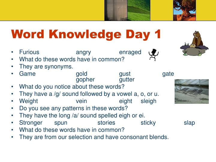 Word knowledge day 1