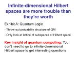 infinite dimensional hilbert spaces are more trouble than they re worth