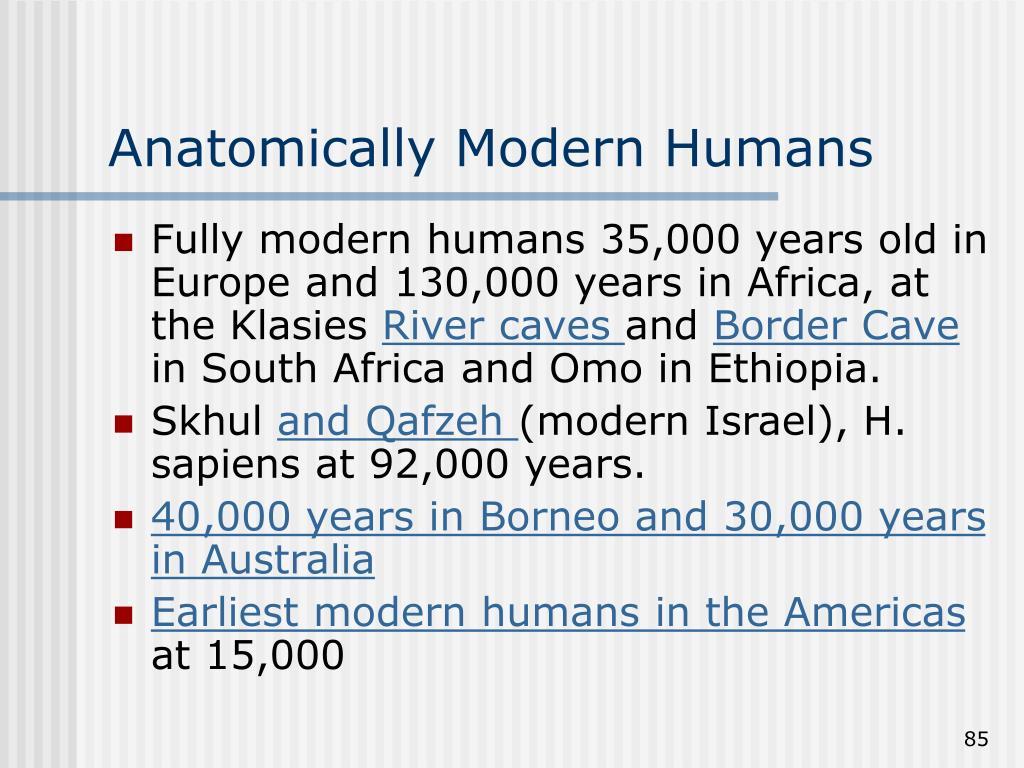 Anatomically Modern Humans