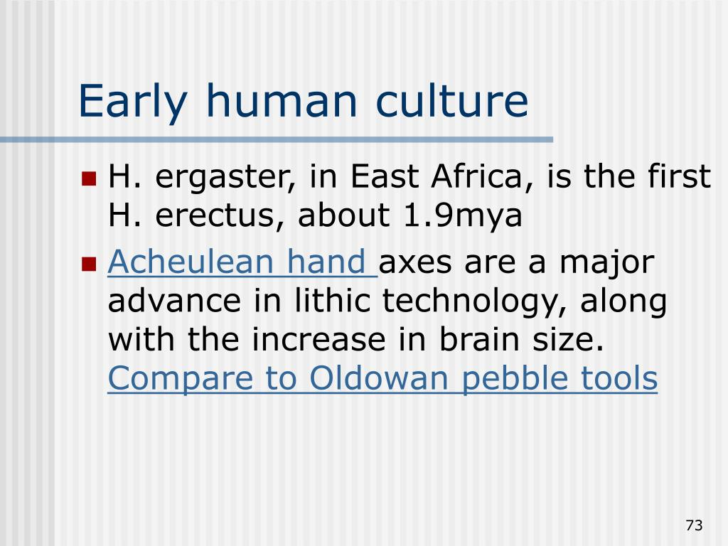 Early human culture