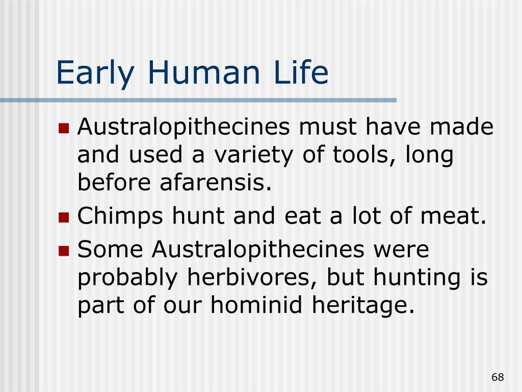 Early Human Life