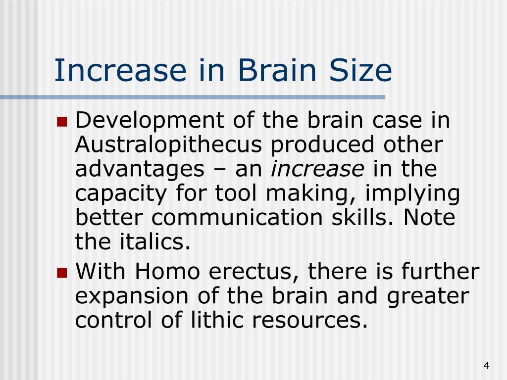 Increase in Brain Size