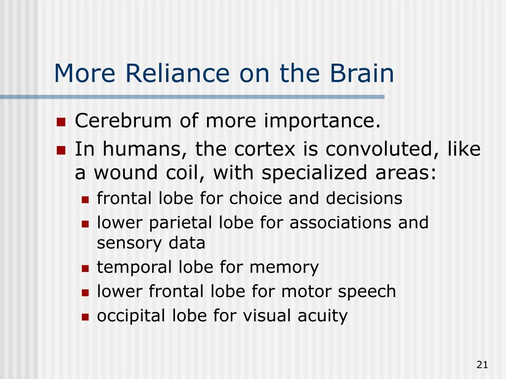 More Reliance on the Brain