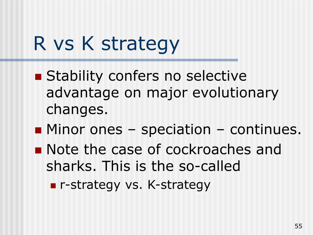 R vs K strategy