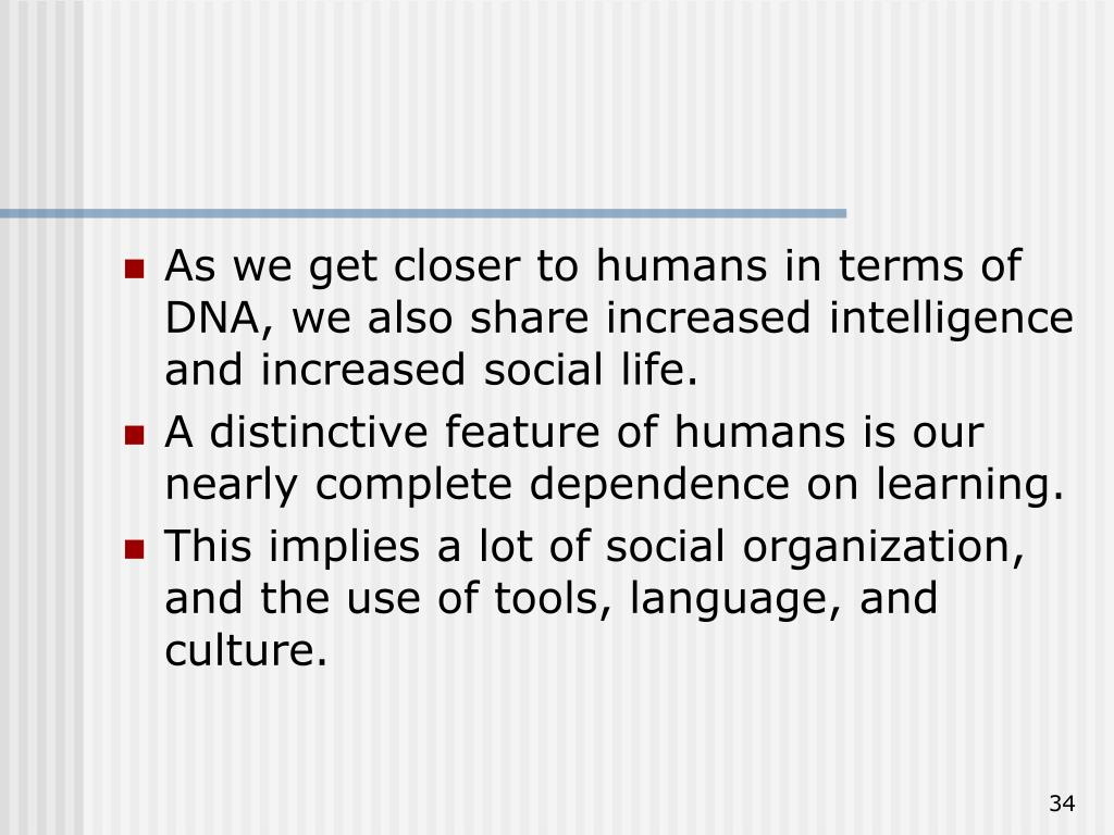 As we get closer to humans in terms of DNA, we also share increased intelligence and increased social life.