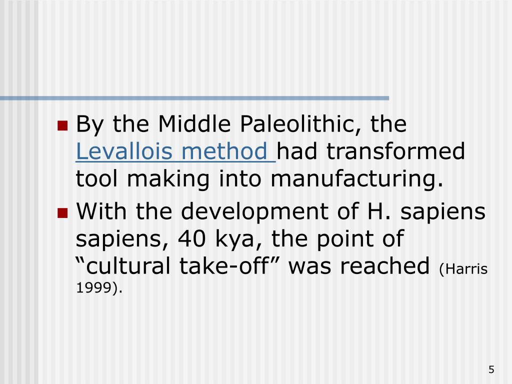 By the Middle Paleolithic, the