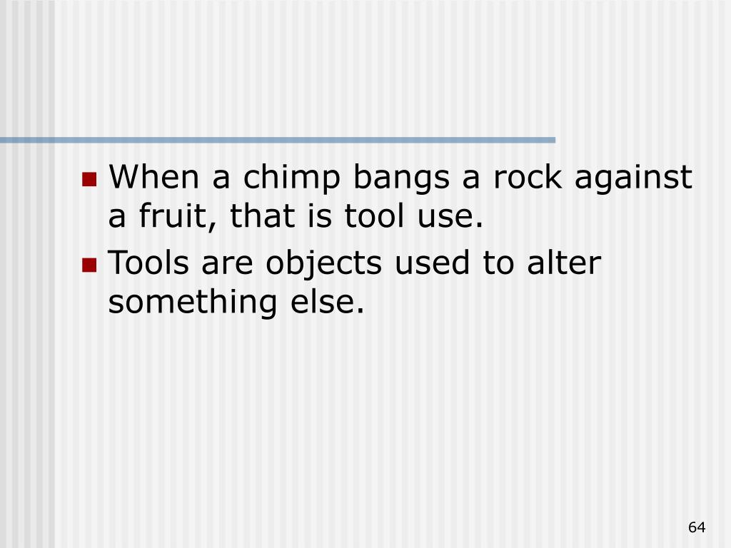 When a chimp bangs a rock against a fruit, that is tool use.