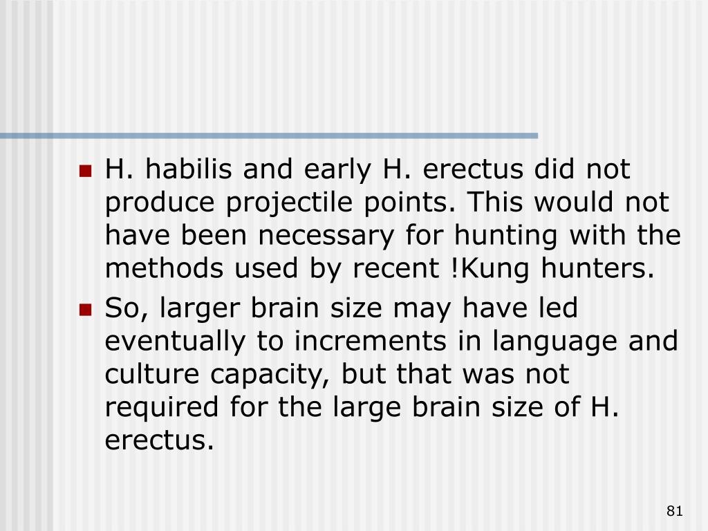 H. habilis and early H. erectus did not produce projectile points. This would not have been necessary for hunting with the methods used by recent !Kung hunters.