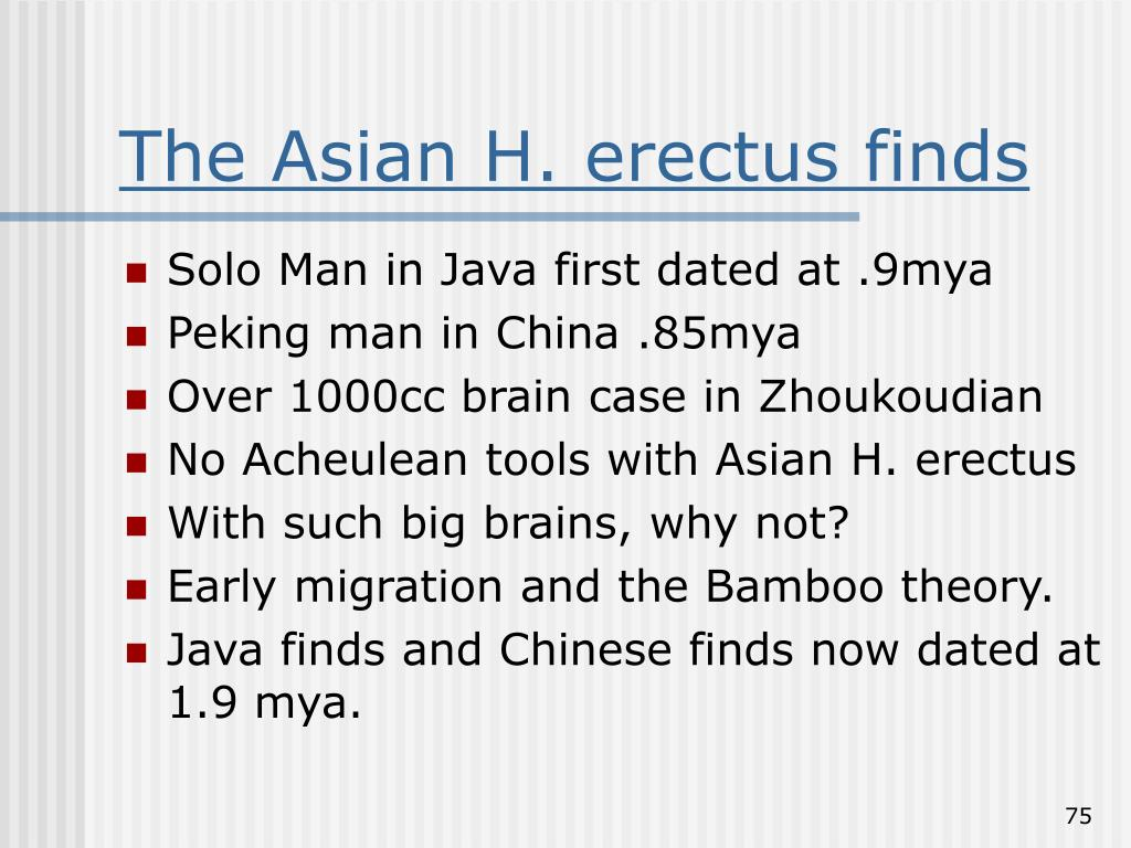 The Asian H. erectus finds