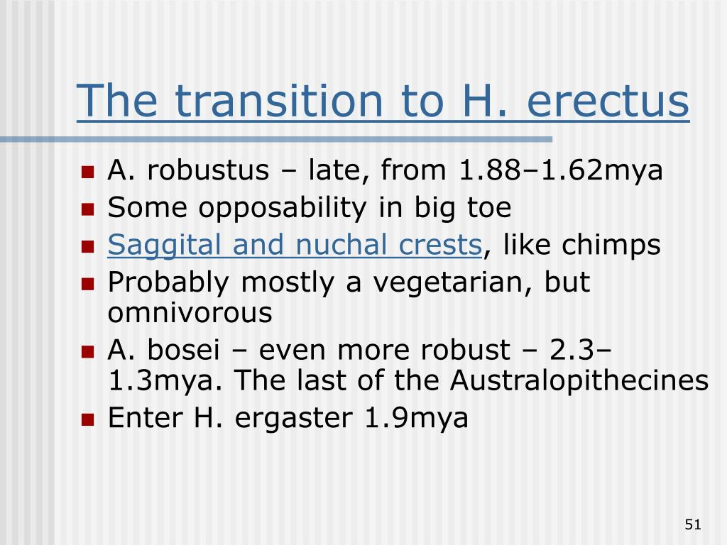The transition to H. erectus