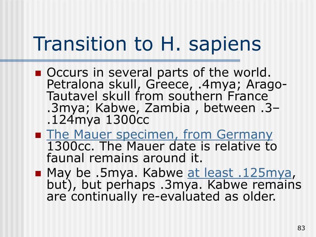 Transition to H. sapiens