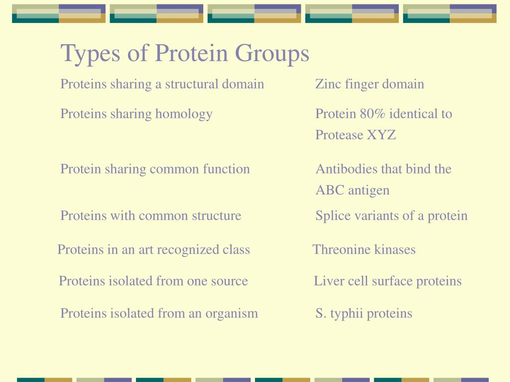 Types of Protein Groups