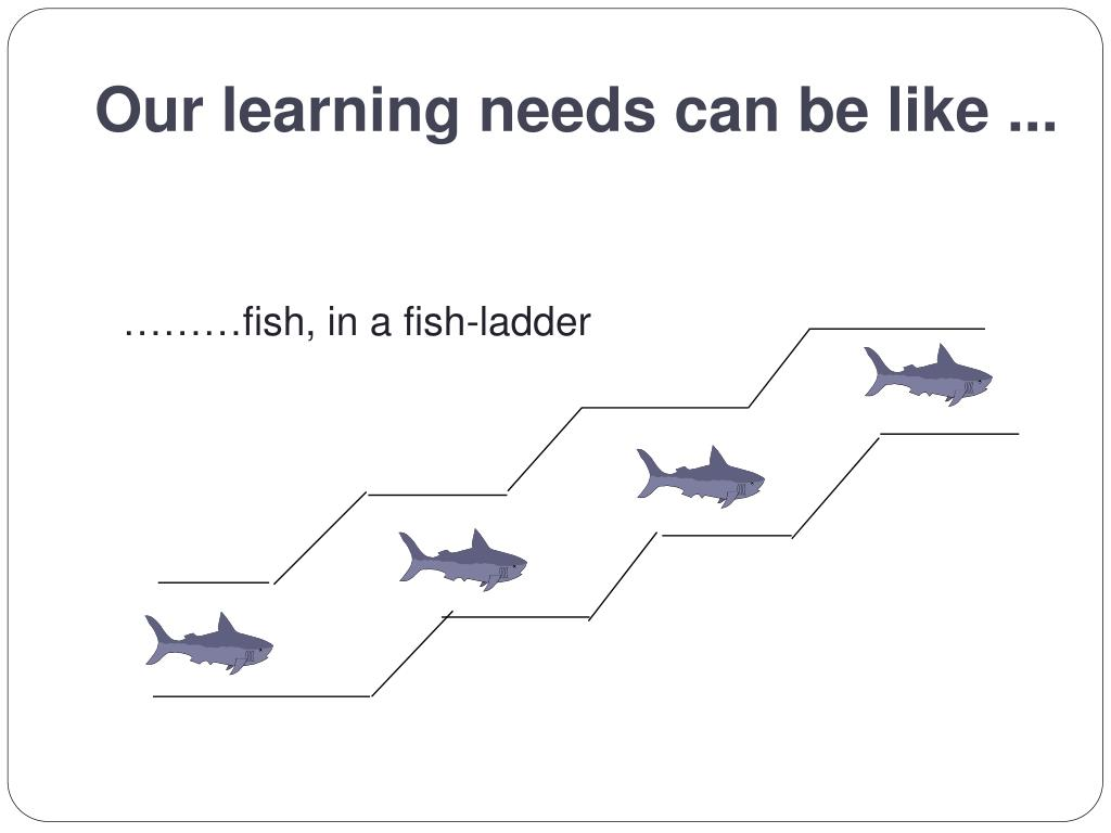 Our learning needs can be like ...