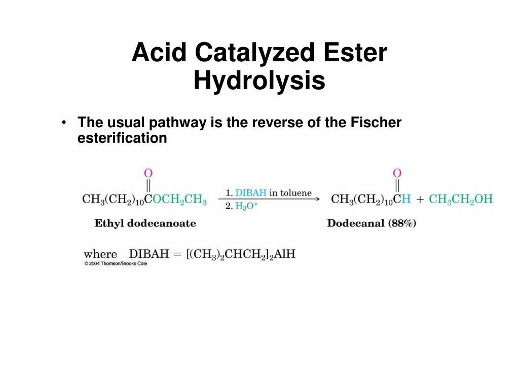 Acid Catalyzed Ester Hydrolysis