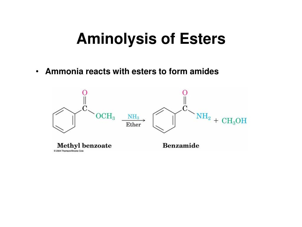 Aminolysis of Esters