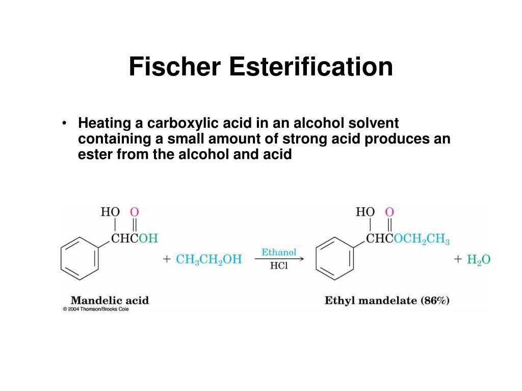 Fischer Esterification