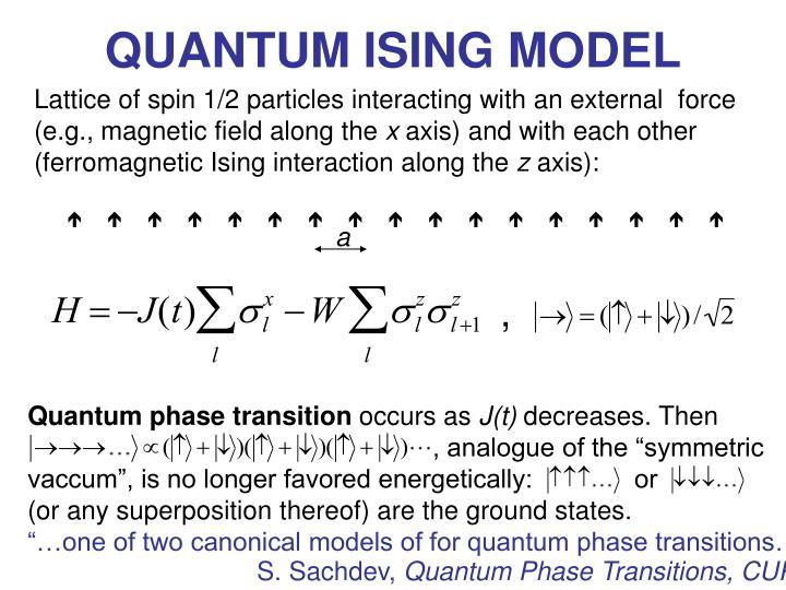 Quantum ising model