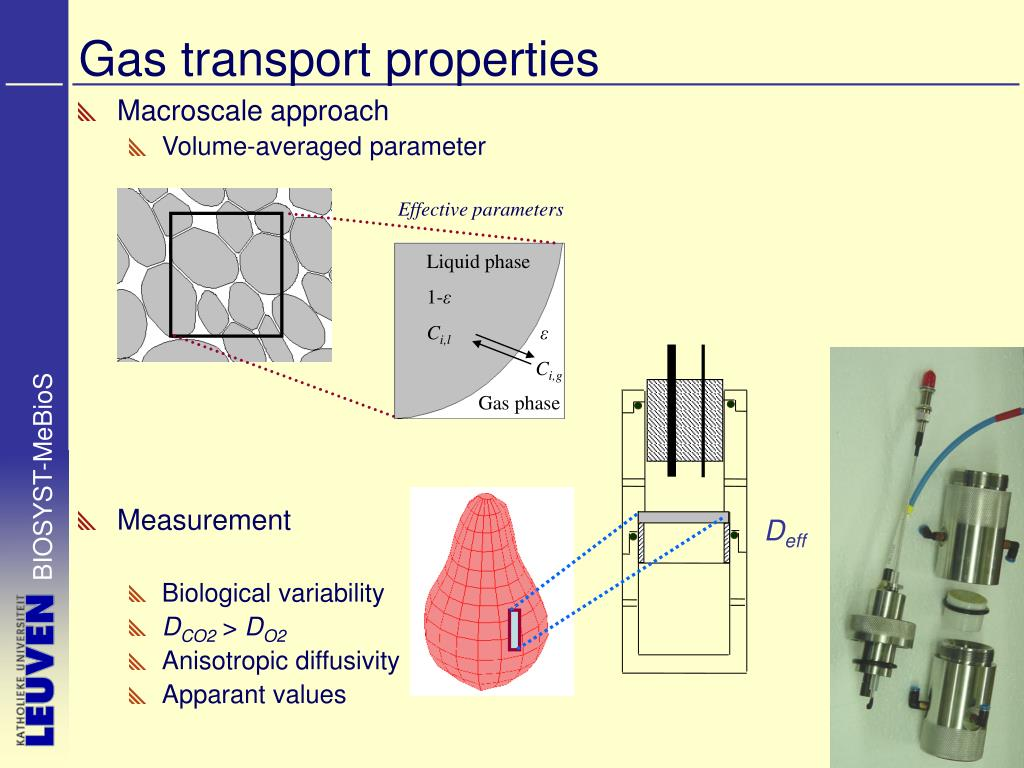 Gas transport properties