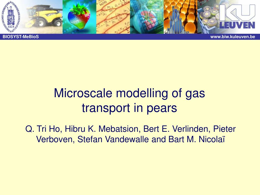 Microscale modelling of gas transport in pears