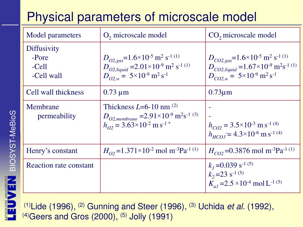 Physical parameters of microscale model