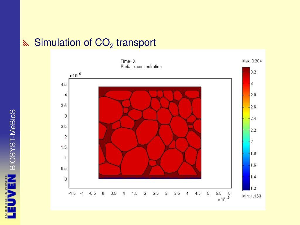 Simulation of CO