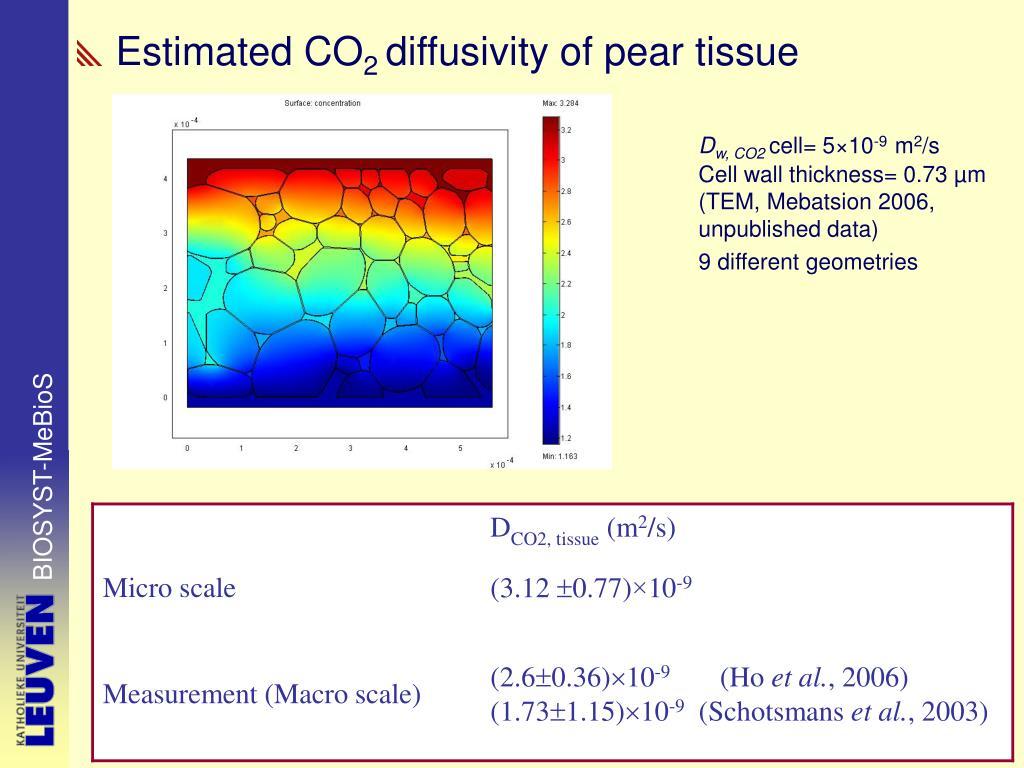 Estimated CO