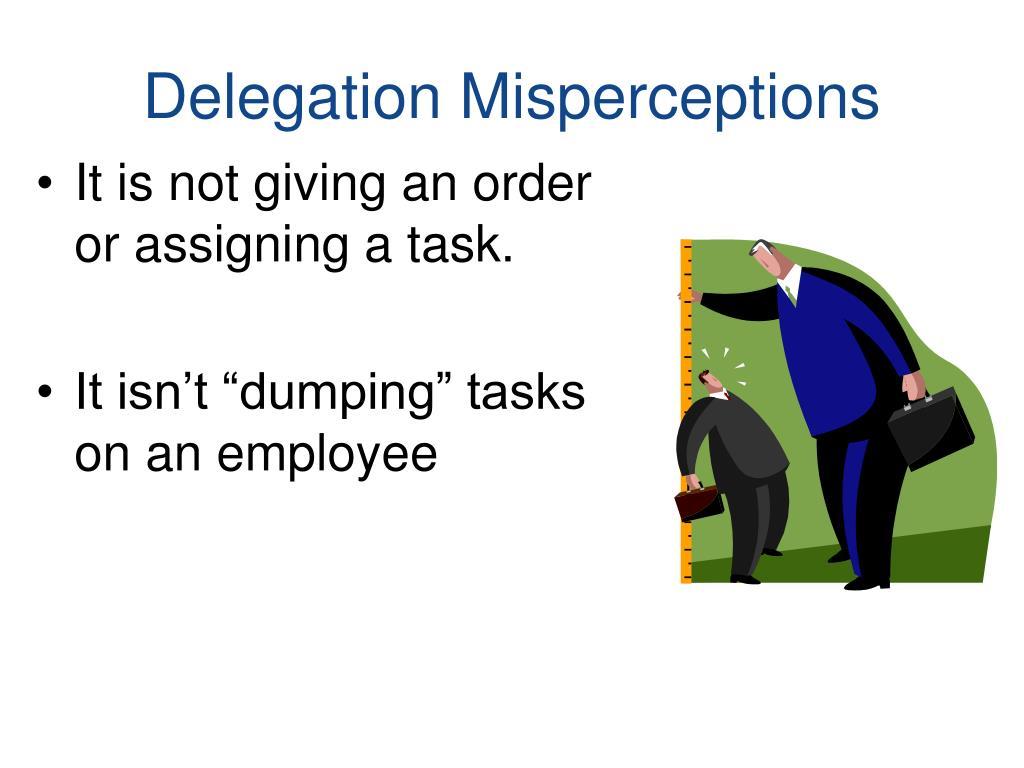 Delegation Misperceptions