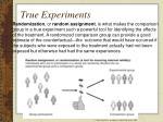 true experiments85