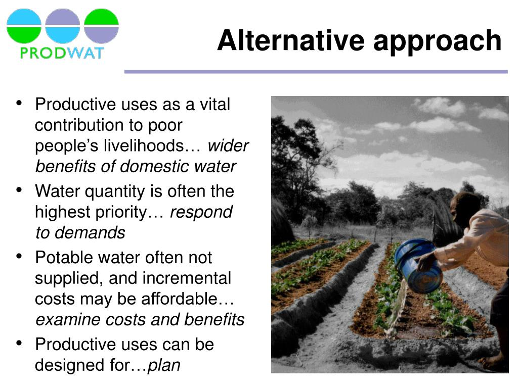 Productive uses as a vital contribution to poor people's livelihoods…