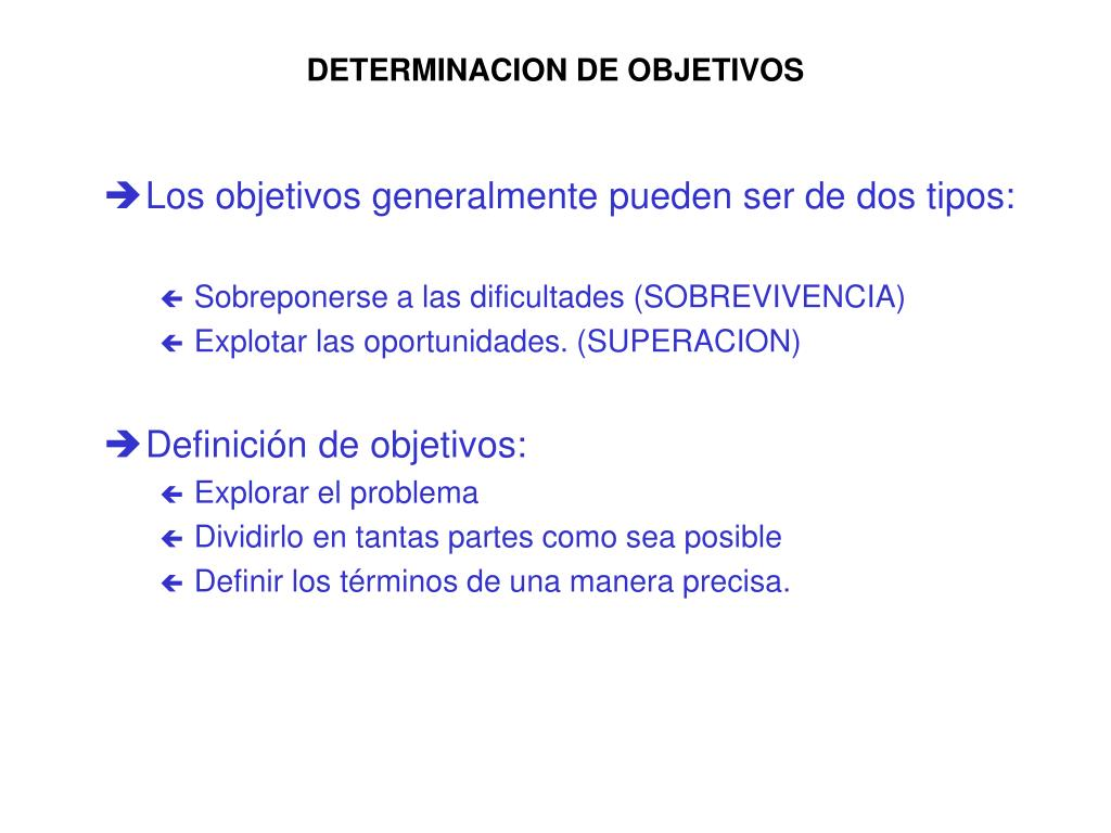 DETERMINACION DE OBJETIVOS
