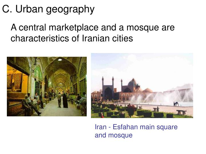 A central marketplace and a mosque are characteristics of Iranian cities