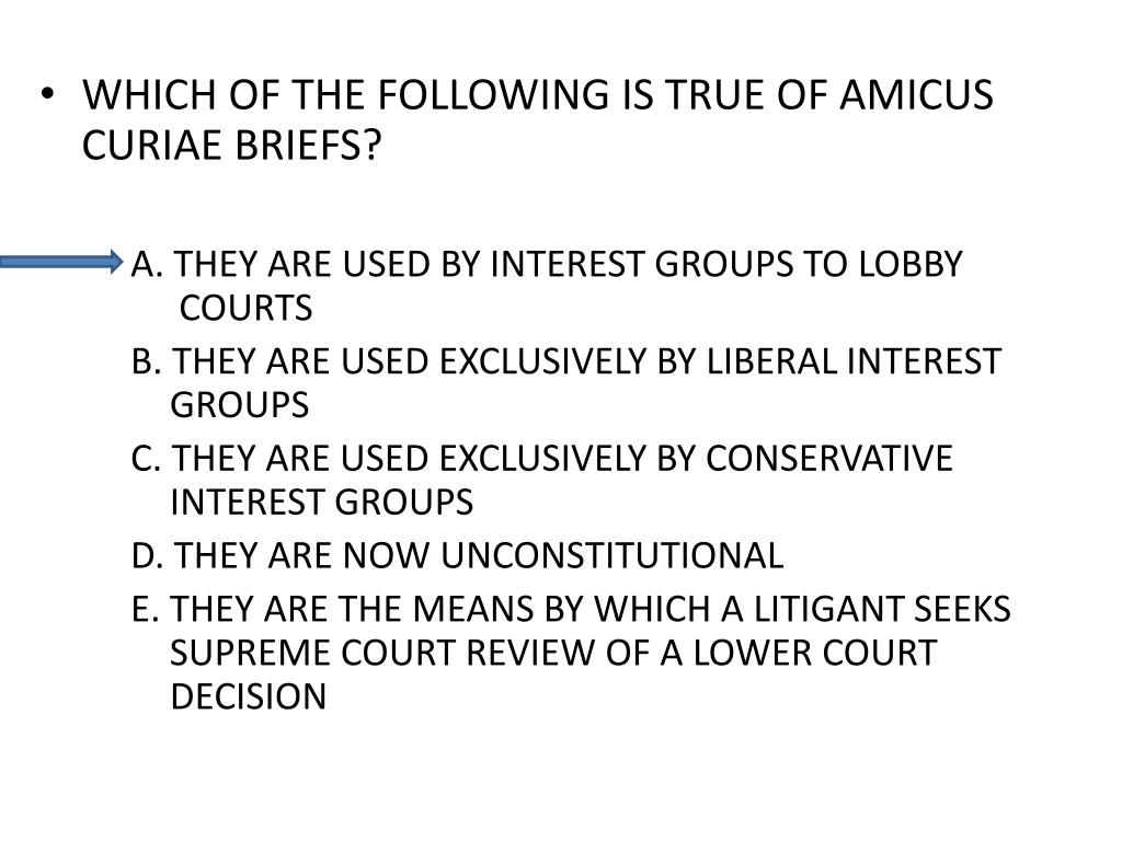 WHICH OF THE FOLLOWING IS TRUE OF AMICUS CURIAE BRIEFS?