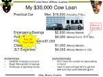 my 30 000 cow loan