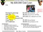my 30 000 cow loan20