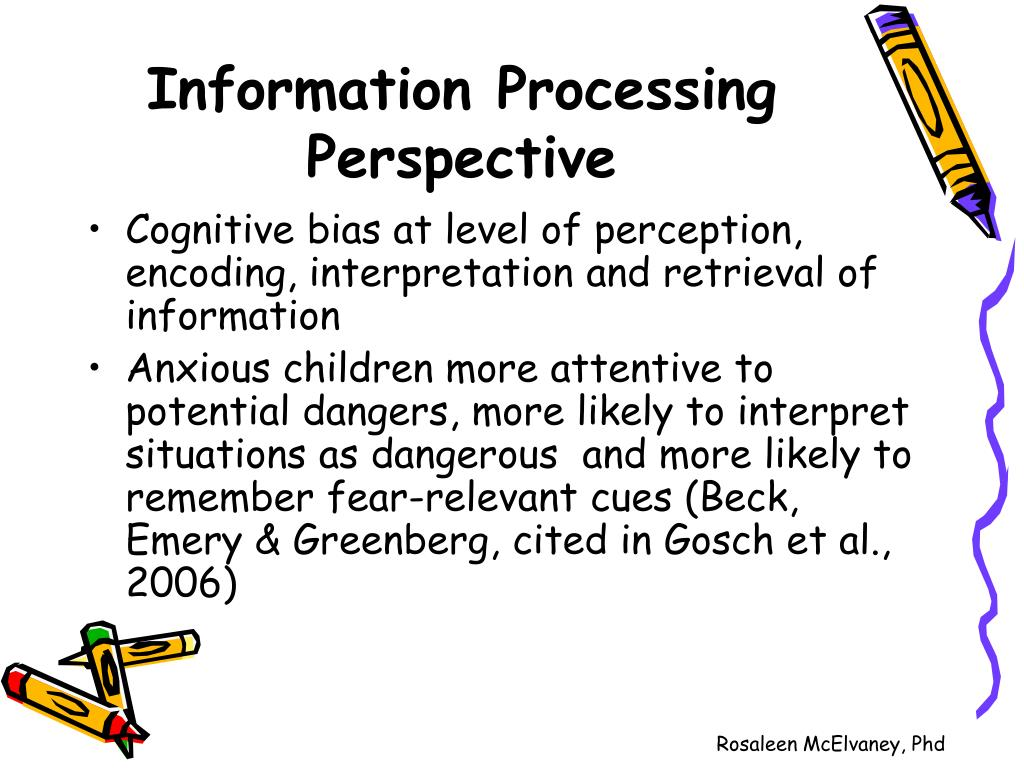 Information Processing Perspective