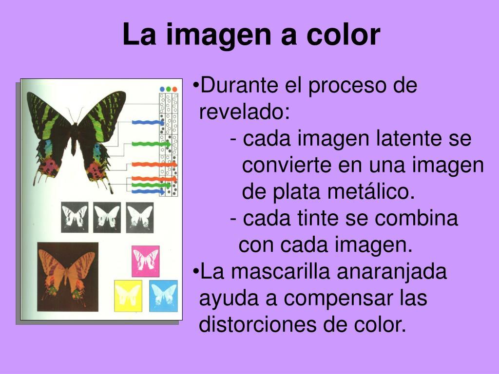 La imagen a color